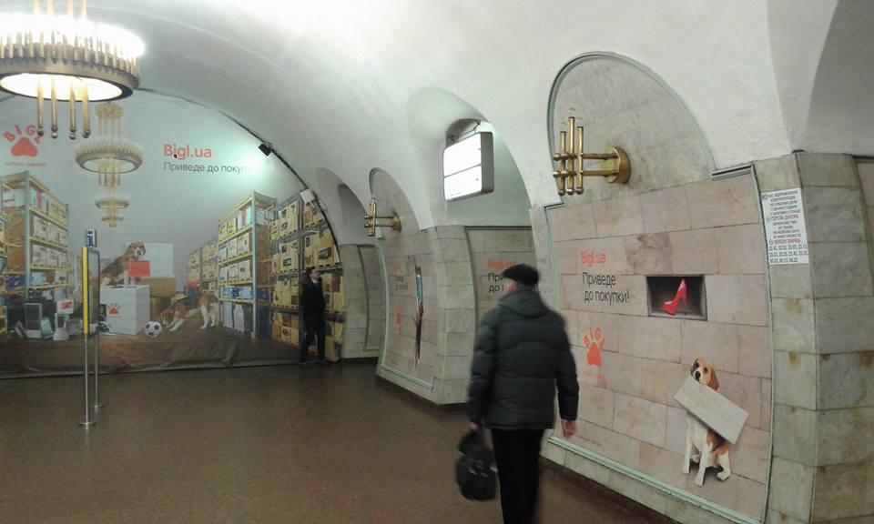 наружка бигля в метро