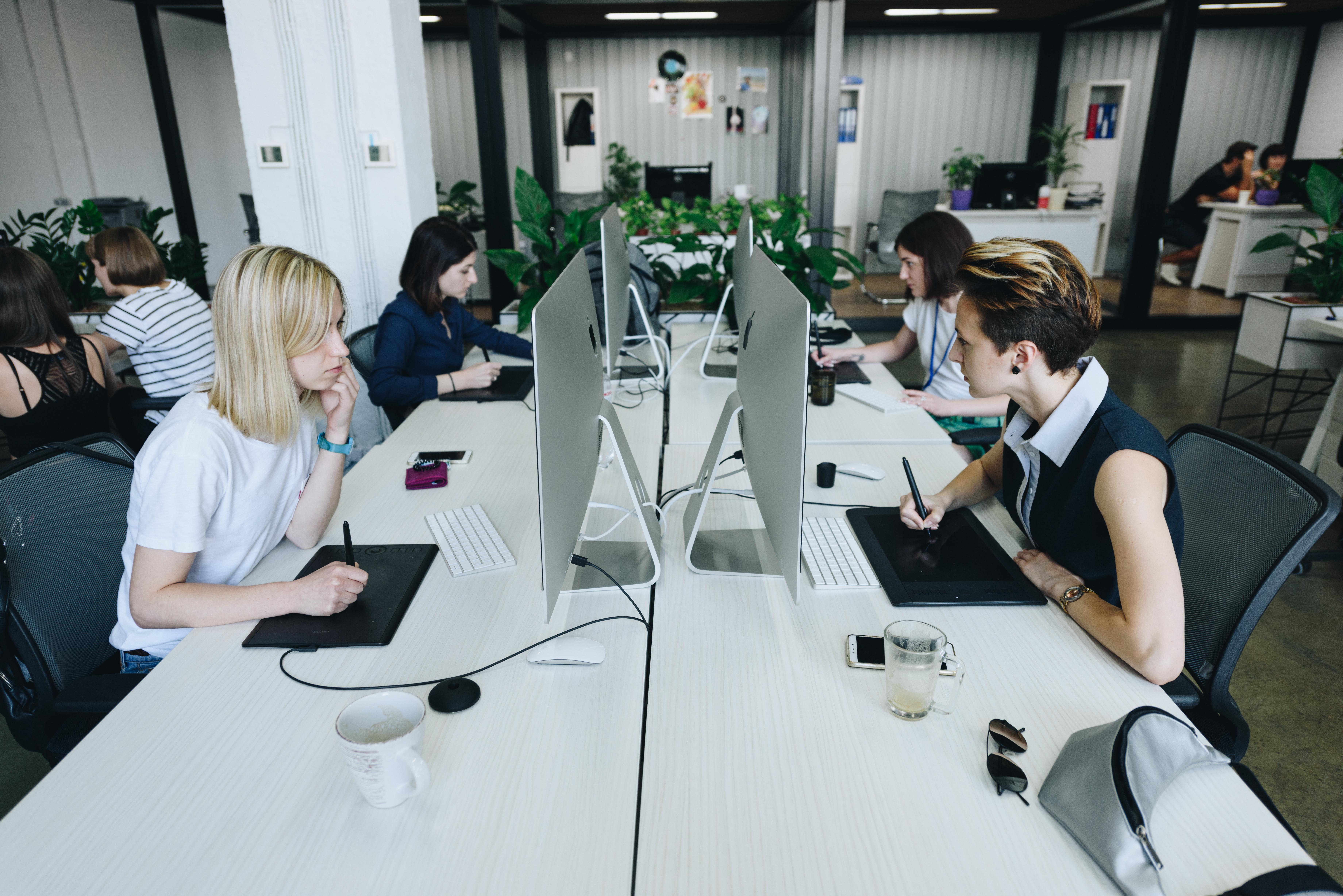 10 крутых украинских проектов: офис Depositphotos - фото