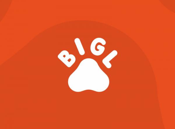 Bigl.ua запустил доставку продуктов из «Форы». Курьер доставит заказ в течение 3 часов